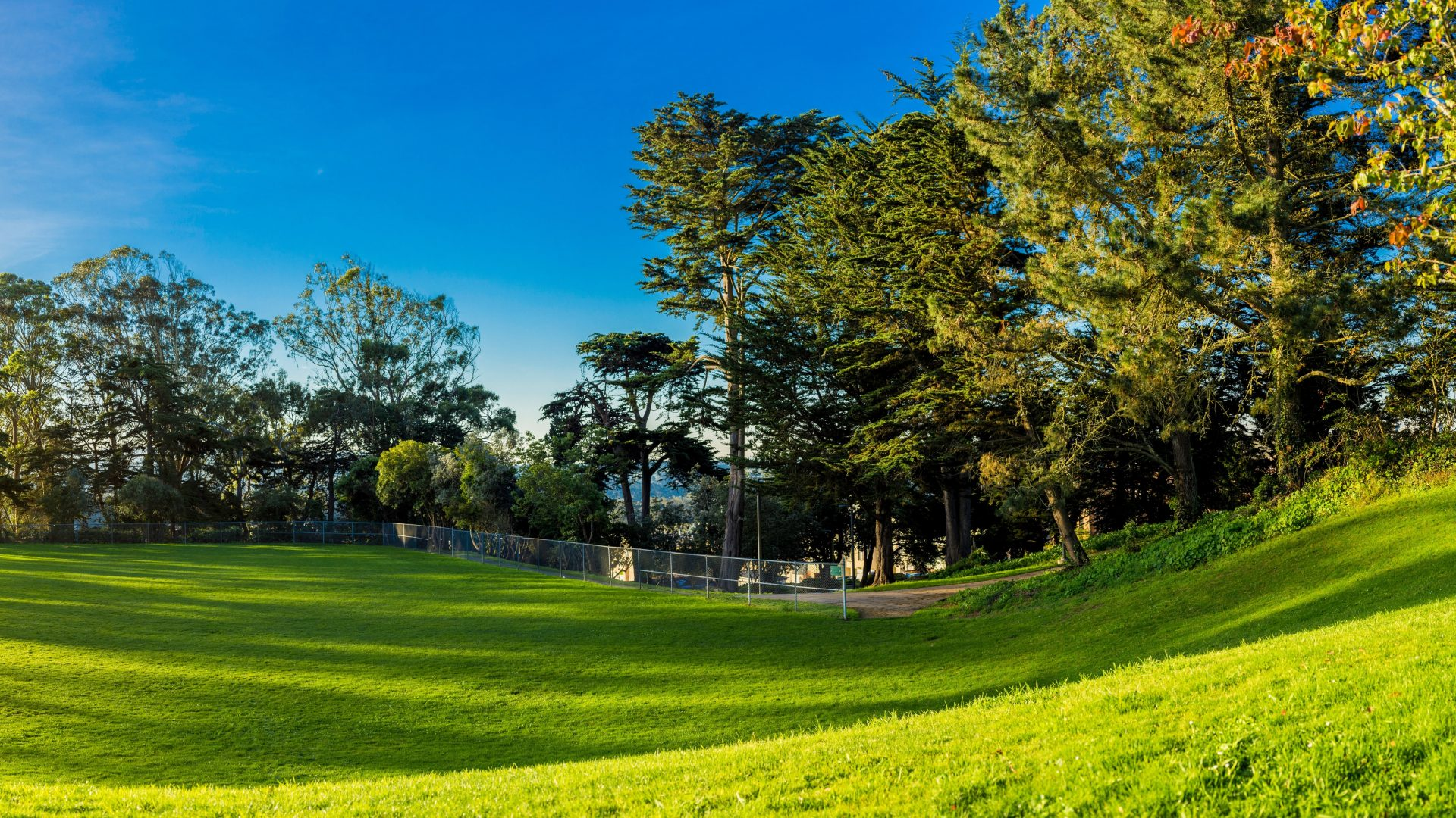 cropped-bright-day-environment-356977-1.jpg